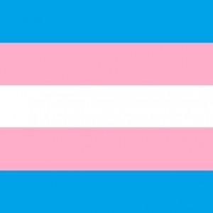 Trans_Pride_Flagsq